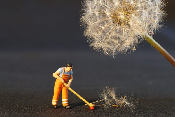 A plastic worker figuring sweeping parts of a dandelion, highlighting the cleaning services required in listing a home
