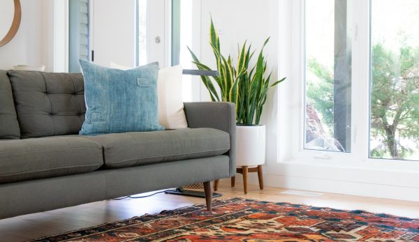 Staged home prior to listing on the mls to sell, showing a grey couch with an oriental rug and plant in a planter